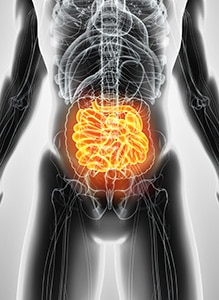 SIBO- brain gut hormone connection