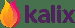 Kalix Partner Logo